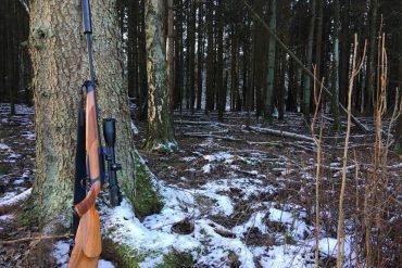 Nepatvirtinta informacija apie naujus medžioklės plotų įkainius