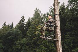 Lipynė į medį Viper Razor 8